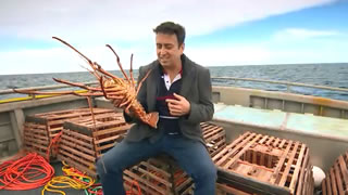 Lobster Fishing – Gerald